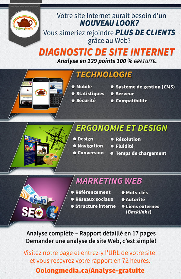 Diagnostic de Site Web_mini