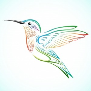 Google-hummingbird-300x300