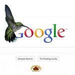 Hummingbird: Le nouvel algorithme de Google à l'affût des questions les plus complexes